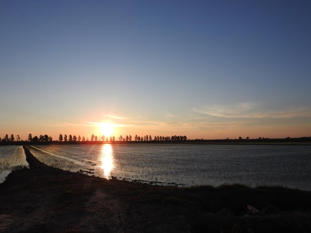 Delta de l'Ebre, turisme sostenible