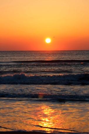 Delta de l'Ebre platges ecoturisme